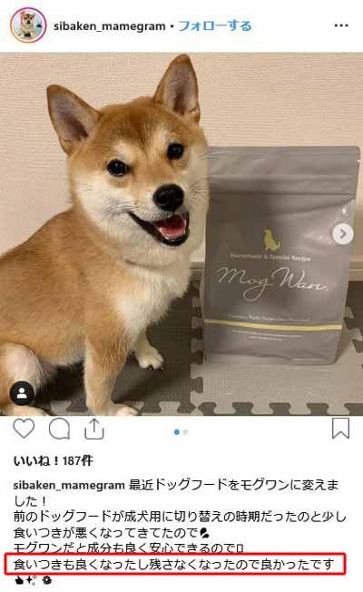 柴犬のモグワン口コミ評価